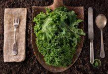 jarmuż, superfood, zdrowie, witaminy, dieta, warzywa