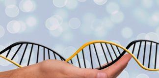 epigenetyka a geny